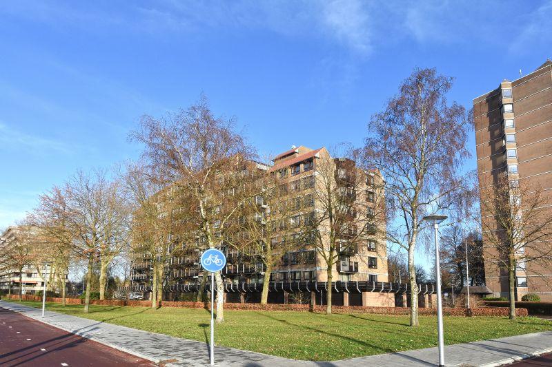 Scottlaan, Eindhoven