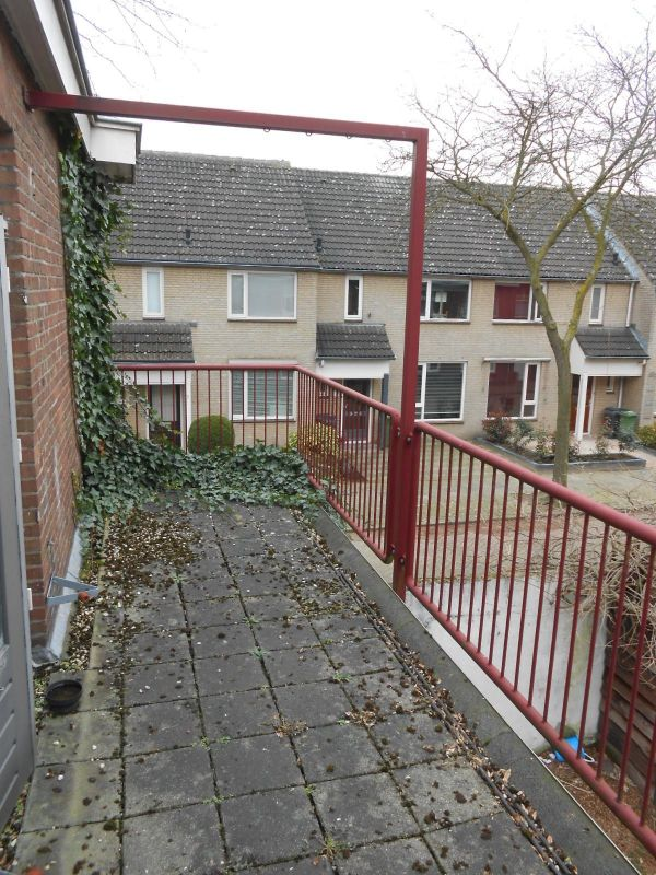 Willem Frisostraat, Eindhoven