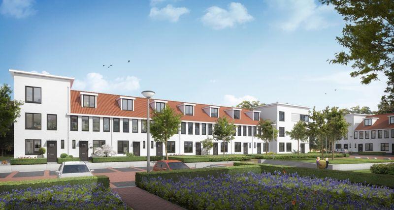 Tulpstraat, Eindhoven