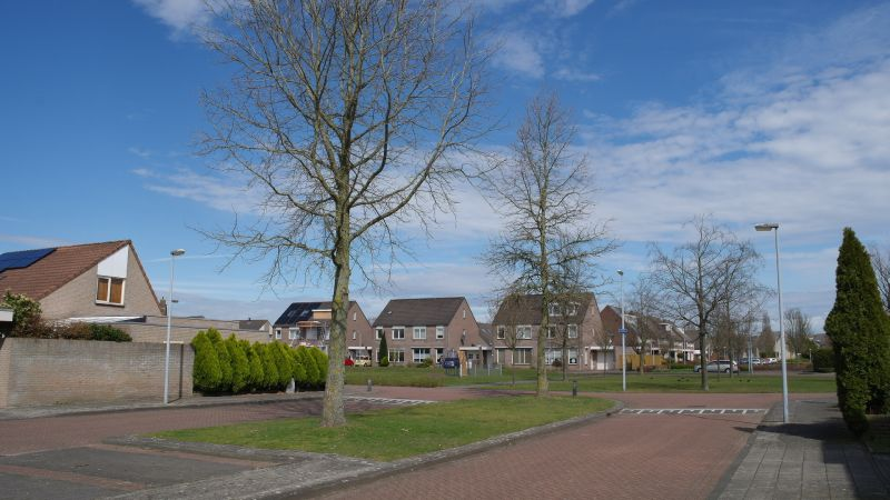 Hermelijn, Veldhoven